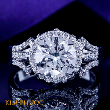Custom Ring ADM689