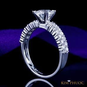 Custom Ring ADM1063