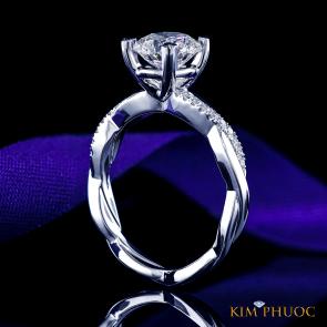 Custom Ring ADM1064