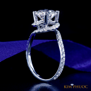Custom Ring ADM671