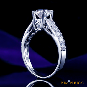 Custom Ring ADM1034
