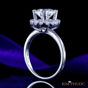 Custom Ring ADM1035