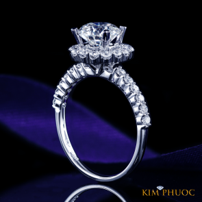 Custom Ring ADM1038