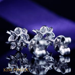 Diamond Earring AEM321
