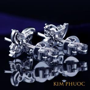 Custom Earrings AEM393
