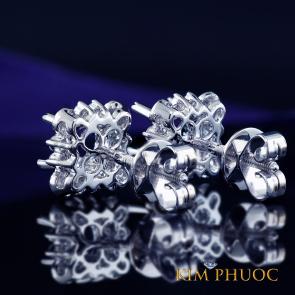 Custom Earrings AEM399